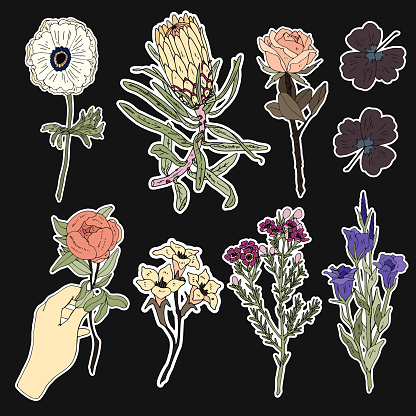 Set of flower and plant patches elements