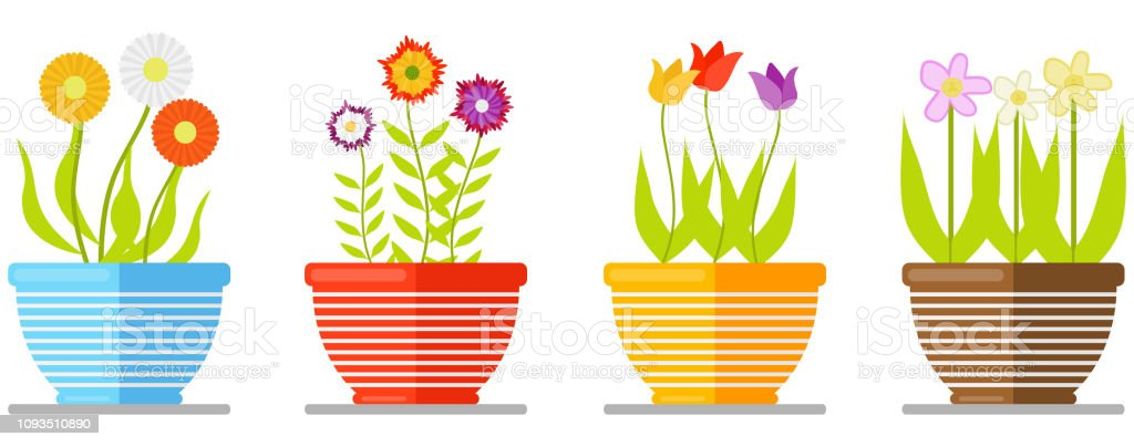 Set Of Flowers In Pot Isolated On White Background Set Of