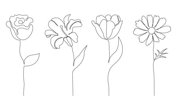 Set of flowers Set of flowers on white background. One line drawing style. plant stem stock illustrations