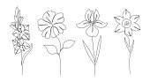 Set of flowers on white background. One line drawing style.