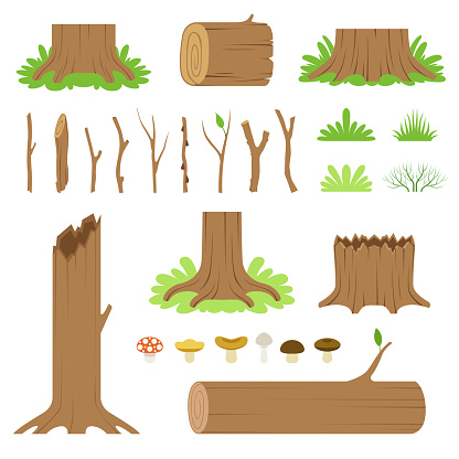 Set of forest tree stumps, logs, sticks, branches, grasses and mushrooms. Vector modern illustration