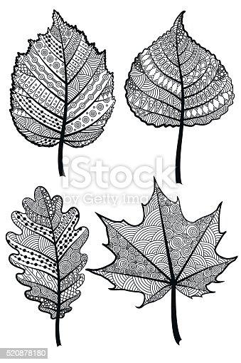 🔥 Imagen de Bellotas y vestor de hojas de roble en estilo boho