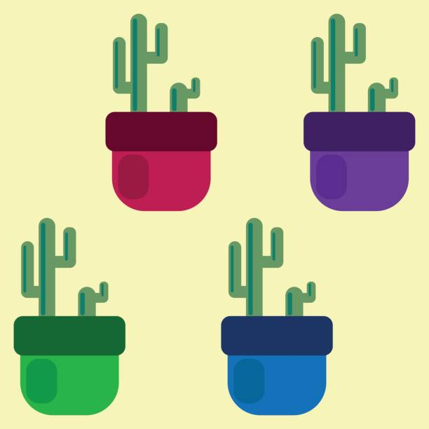 set of four colored cacti in pots. vector illustration. set of four colored cacti in pots. vector illustration pacific dogwood stock illustrations