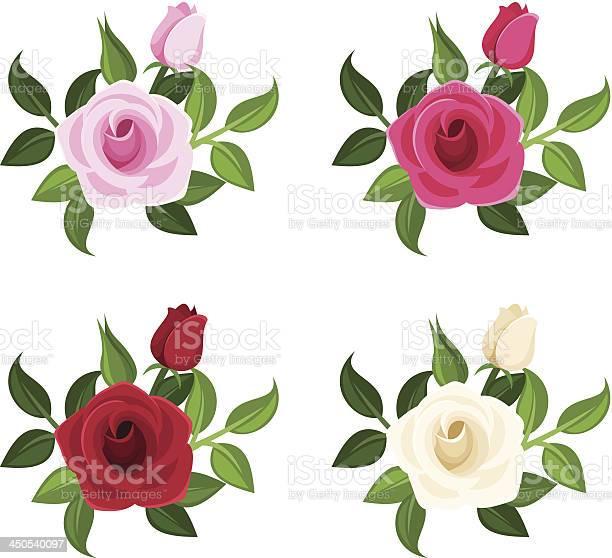 Set of four colored roses vector illustration vector id450540097?b=1&k=6&m=450540097&s=612x612&h=mkn8ymm3qmmqiec1rppmxq35np btbvvhnjpkvcsve8=