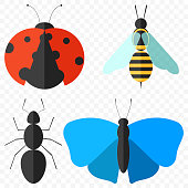 A set of four simple insects - a ladybug, an ant, a butterfly and a bee. Isolated vector illustration on a transparent background.
