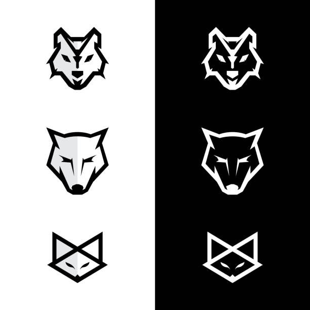 Set of fox and wolf icons Set of fox and wolf icons. Vector wolf Vintage Design Element. Black silhouette fox. Vector illustration EPS.8 EPS.10 silhouette of a howling coyote stock illustrations