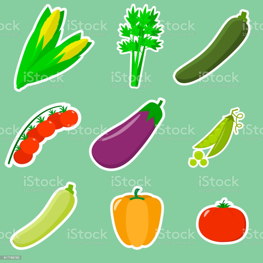A set of fresh vegetables in a white stroke on a green background. vector art illustration