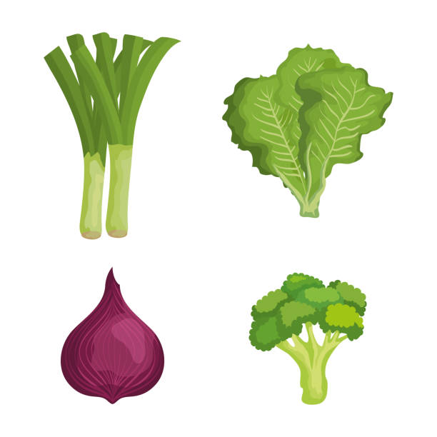 set of fresh vegetables with healthy nutrition vector art illustration