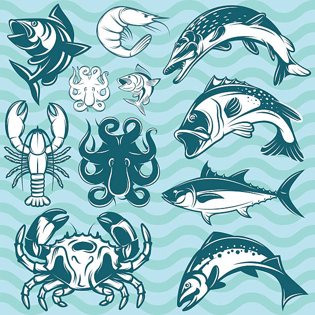 set of freshwater and marine fish and shellfish vector art illustration