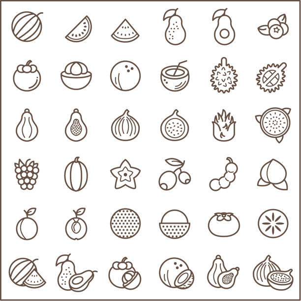 Set of fruit and vegetarian food Icons line style. Contains such Icons as fig, papaya, coconut, mangosteen, avocado, peach, watermelon, lychee And Other Elements.  customize color, stroke width control , easy resize. fig stock illustrations