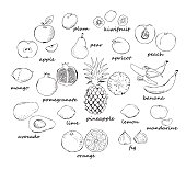 Set of fruit doodles
