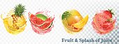 Set of fruit juice splash . Pineapple, strawberry, watermelon, mango and guava. Vector