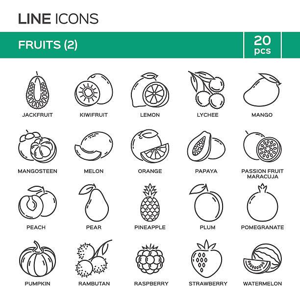 illustrations, cliparts, dessins animés et icônes de set of fruit thin line icons in alphabetical order. - fruit de la passion