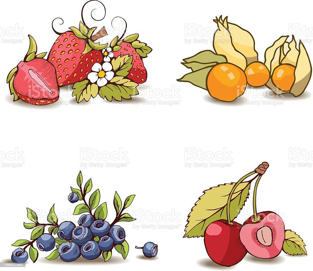 Conjunto de frutas - ilustración de arte vectorial