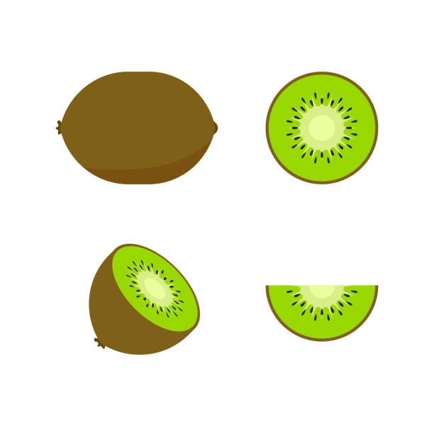 ilustrações de stock, clip art, desenhos animados e ícones de set of fruits and berries. summer fruit. fruit apple, pear, strawberry, orange, peach, plum, banana, watermelon, pineapple kiwi lemon fruits vector collection. vector illustration. - kiwi
