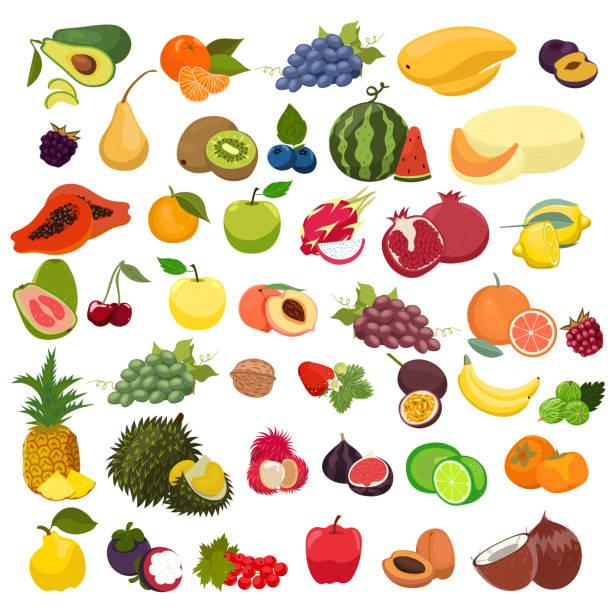 illustrations, cliparts, dessins animés et icônes de ensemble de fruits isolés sur un fond blanc. graphiques vectoriels. - fruit de la passion