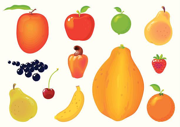 ilustrações, clipart, desenhos animados e ícones de conjunto de frutas. - fruit salad