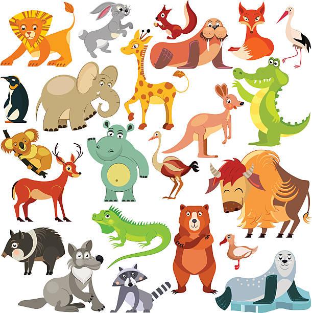 set of funny animals from all over the world. - giraffenhumor stock-grafiken, -clipart, -cartoons und -symbole