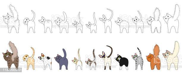 Set of funny cats showing their butts vector id1137202012?b=1&k=6&m=1137202012&s=612x612&h=6vxhx6eamv5xhxwr5mgrxuhywlefpx7twppjvyvmwtm=