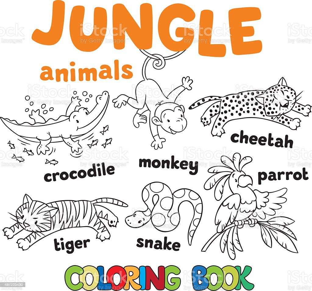 Set Of Funny Jungle Animals Coloring Book Royalty Free Stock Vector Art