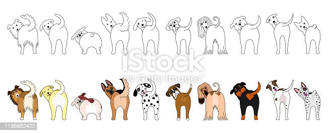 Set of funny large dogs showing their butts