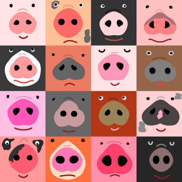 面白い豚面のセット ベクターアートイラスト