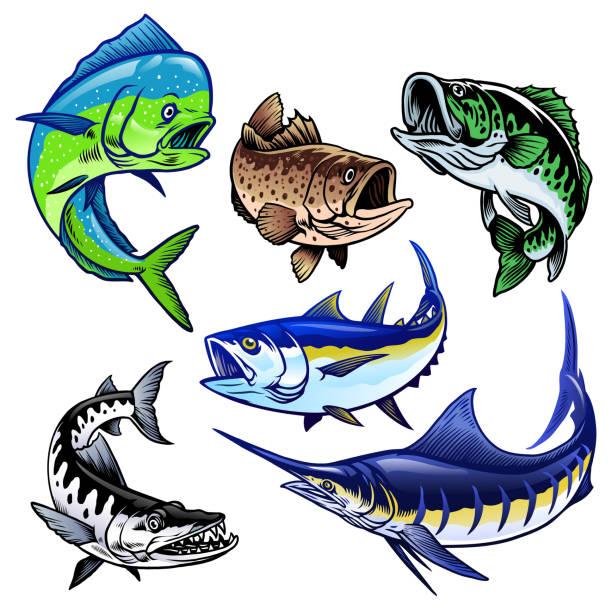zestaw kolekcji wiązek gamefish - rybactwo stock illustrations