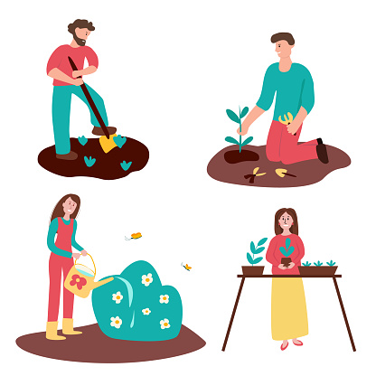 Set of gardening people - man with shovel, man planting tree, woman watering bush, woman replanting seedling in pots. Vector illustration for web, banners, flyers, posters, prints, etc
