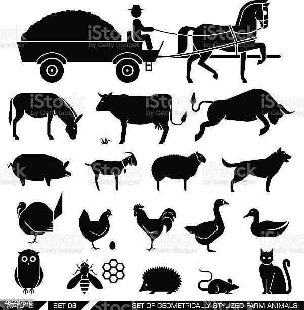 Set of geometrically stylized farm animals vector id464437570?b=1&k=6&m=464437570&s=612x612&h=48gqtzefzz3ta25zeos2p61 xq6lbdfocccwyhps9dq=