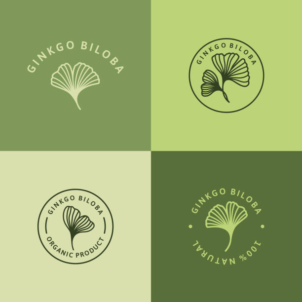Set of Ginkgo Biloba Leaf green badge and icon in trendy linear style - Vector round Logo of gingko 100 percent natural. Set of Ginkgo Biloba Leaf green badge and icon in trendy linear style - Vector round Logo of gingko 100 percent natural. Template for packing Cosmetics, Medicines, biological additives, organic food ginkgo stock illustrations
