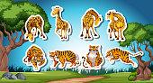 Set of giraffe and tiger sticker illustration