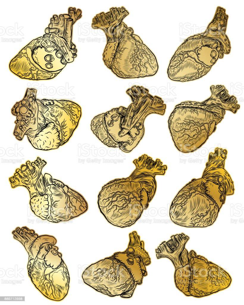Ilustración De Conjunto De Corazones Humanos Oro En La Mano Dibujado