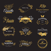 Collection of vector gold logo templates. Flourishes calligraphic elements and frames. Modern style of design elements, postcard, banners.