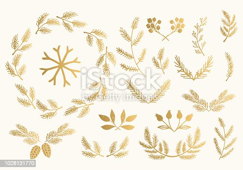 Set of golden fir, spruce, pine branches. Winter wreath. Gold Christmas design.