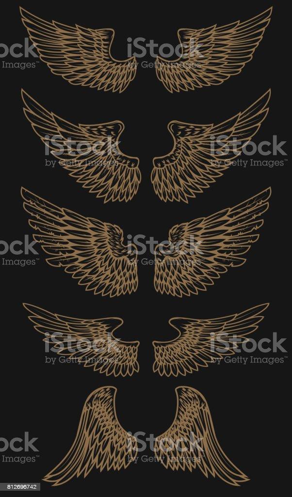 Set of golden wings on dark background. Vector illustration vector art illustration