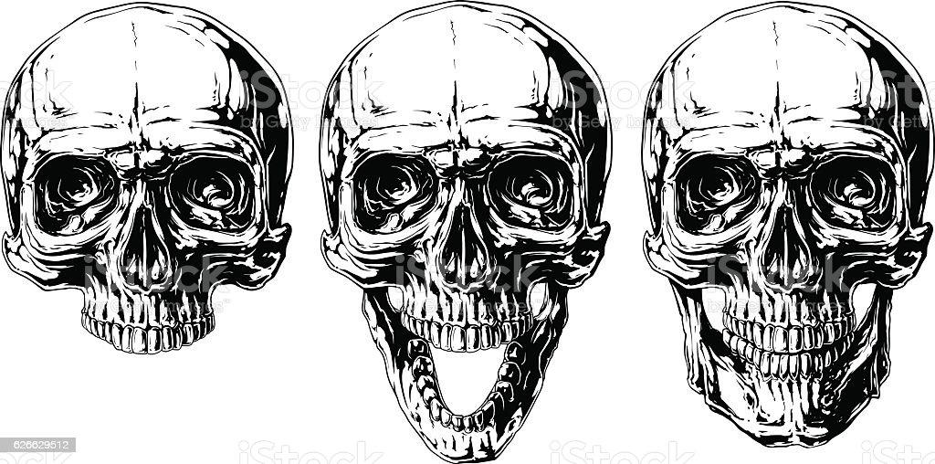 Human Jaw Tattoo: Set Of Graphic Black And White Human Skull Tattoo Stock