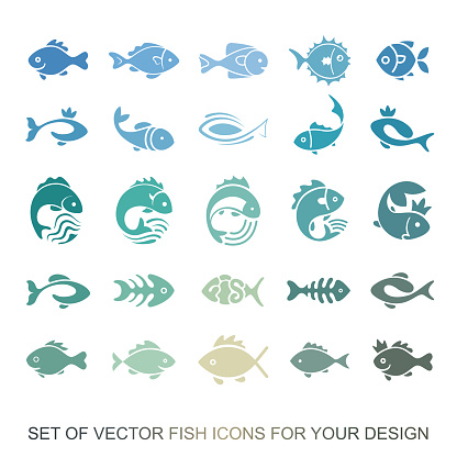 Set of graphic insulating fish. variety of marine and freshwater residents for menu restaurants. Vector collection of icons and illustrations