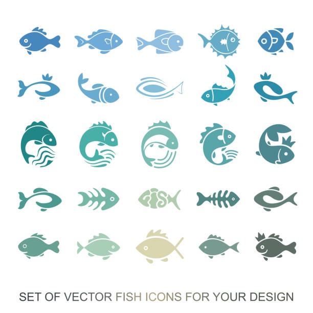 ilustrações de stock, clip art, desenhos animados e ícones de set of graphic insulating fish. variety of marine and freshwater residents for menu restaurants. vector collection of icons and illustrations - peixe