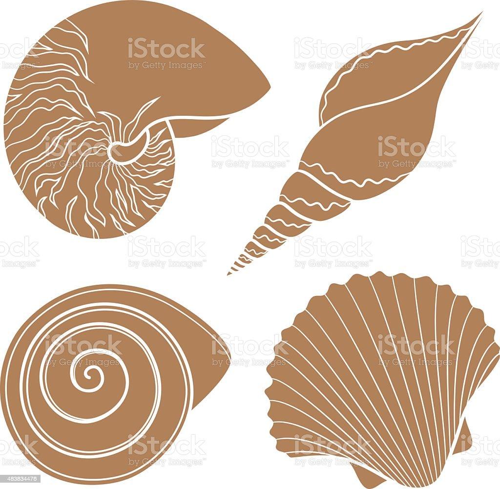 Set of graphic sea shells vector art illustration