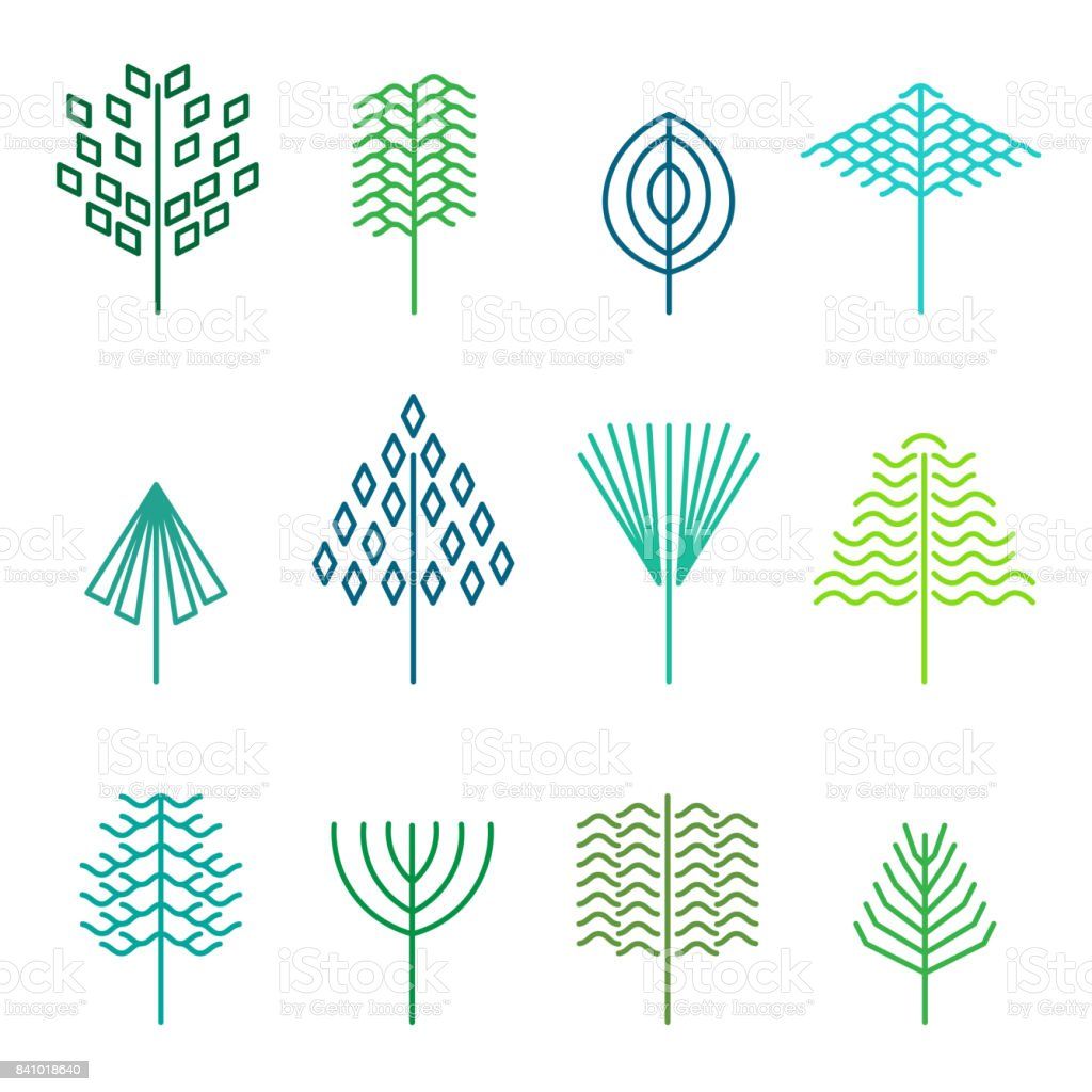 Set Of Graphical Line Trees And Leaves Signs Logos And Symbols Stock