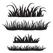 Set of grass, black silhouettes isolated on white background. Set of design elements of nature. Vector illustration