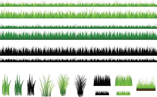 """ilustrações, clipart, desenhos animados e ícones de conjunto de grama verde e contorno, isolada no branco """" - gramado terra cultivada"""