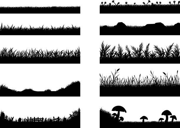 ilustrações, clipart, desenhos animados e ícones de conjunto de vetor de grama no fundo branco - gramado terra cultivada