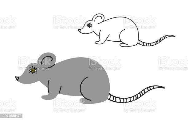Set of gray rat and outline rat in flat style vector id1204585471?b=1&k=6&m=1204585471&s=612x612&h=l bximkh09v6akoi23uuiebe3gjyc24xvaowqrn6ycc=