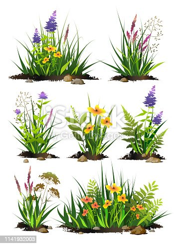 Set of  green grass and flowers with pieces of black soil and stones. Grass bushes of different shapes. Vector illustration.