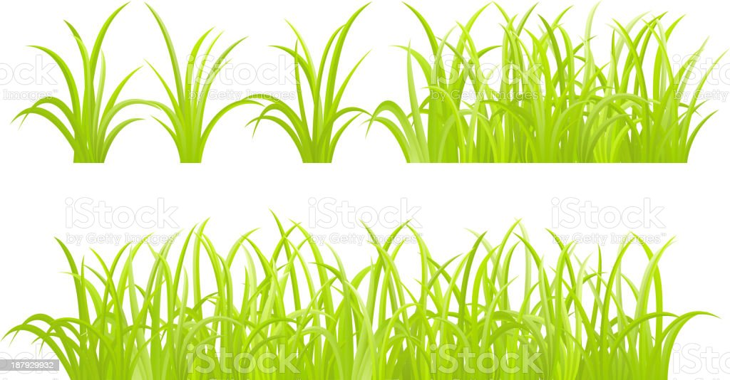 set of green grass element vector art illustration