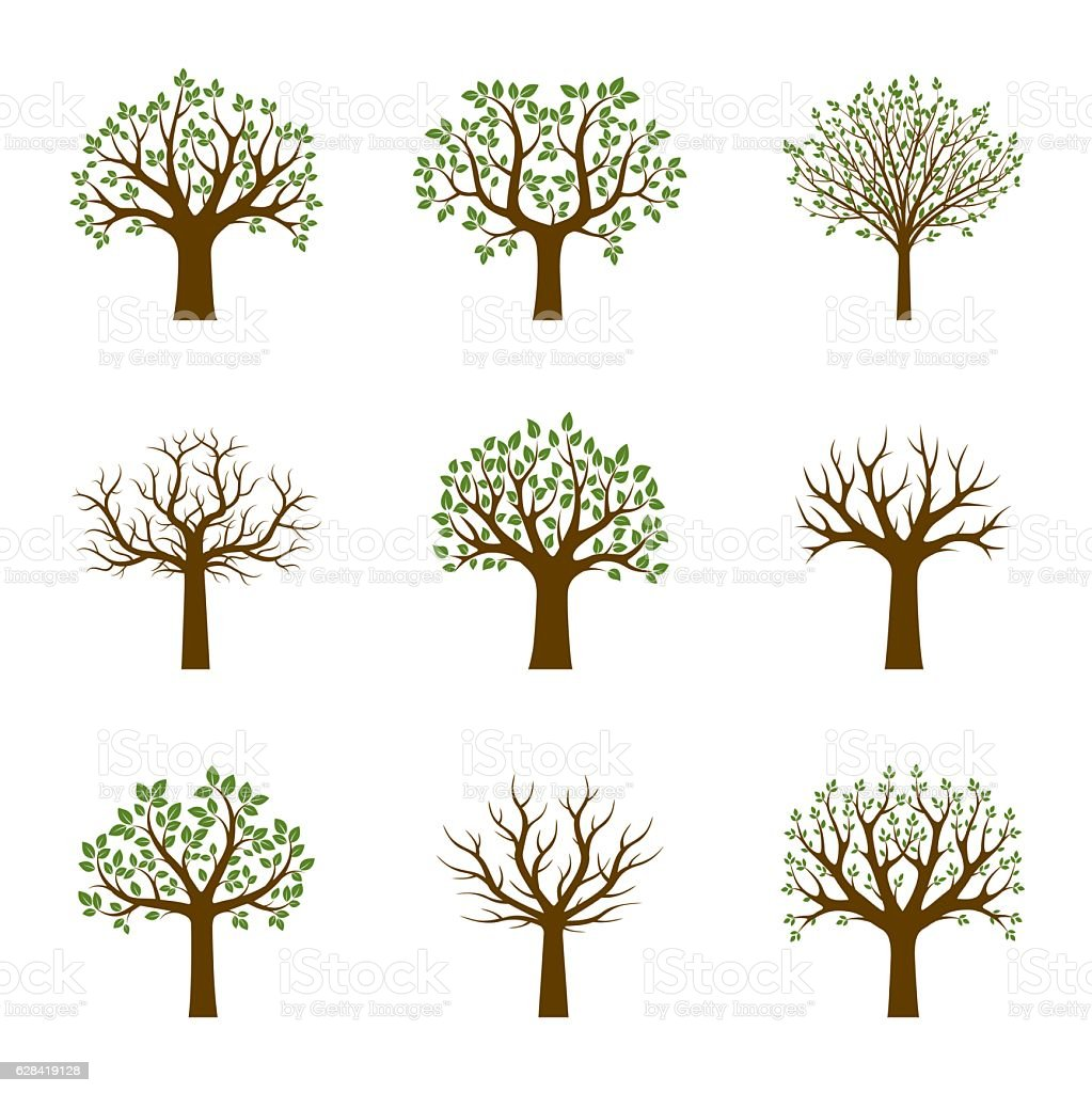 Set of Green Trees. Vector Illustration. vector art illustration