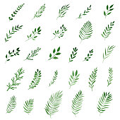 set of green watercolor leaves and branches isolated on white