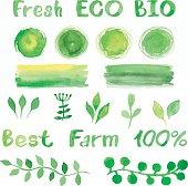 Set of green watercolor organic bio backgrounds, spots, font, lo