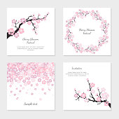Set of greeting cards and invitation card with cherry blossom. Vector Illustration.